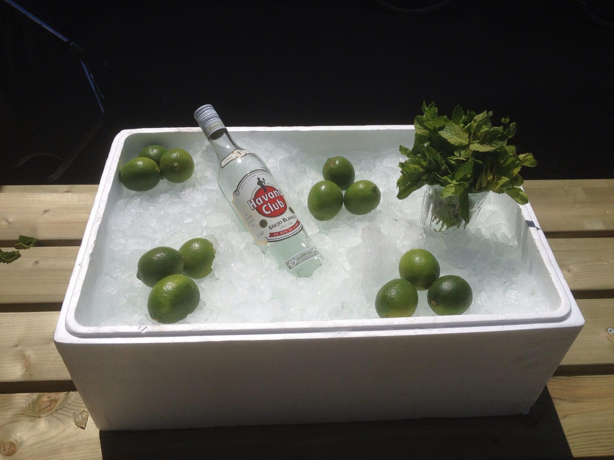 Cocktailpakket Mojito